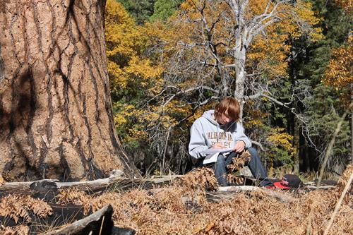 An ARC participants writing in a Yosemite Valley meadow during a fall weekend retreat
