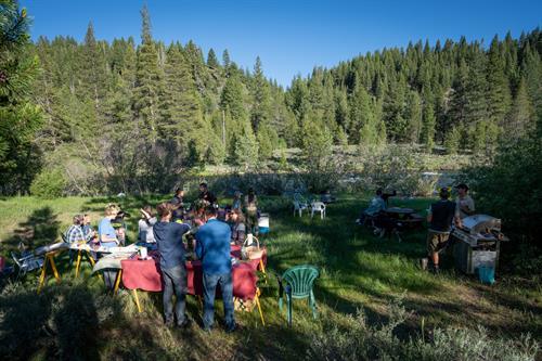 Summer picnic gathering