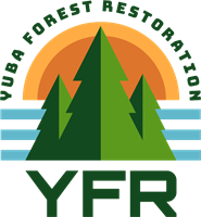 Yuba Forest Restoration