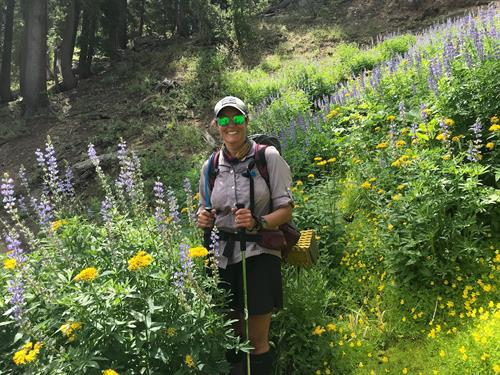 The Tahoe National Forest offers a number of local backpacking options.