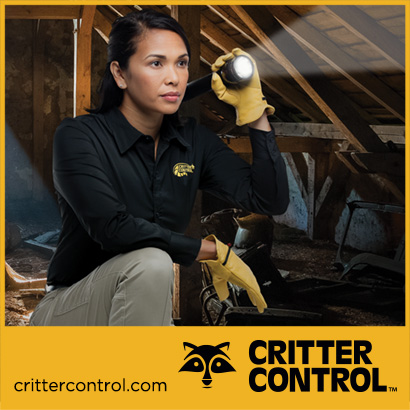 Soiled Attic Cleanup, attic insulation and microbial services