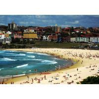 Taste of Australia Trip Information Session