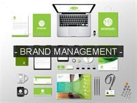 Zenith Marketing & Business Dev.