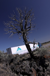On any given day we have 20 trucks sprecd between BC and California