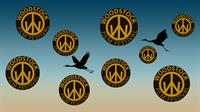 Woodstock Film Festival - screen