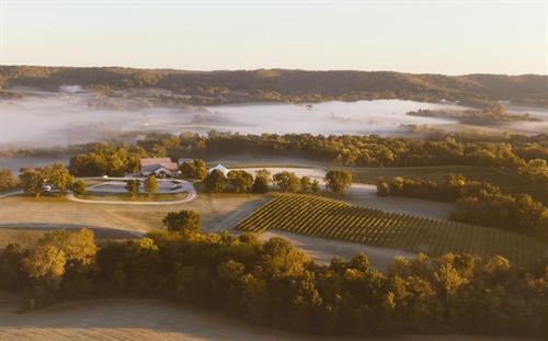Noboleis Vineyards Views