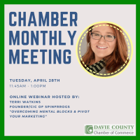 ONLINE - Chamber Monthly Meeting