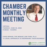 VIRTUAL Chamber Monthly Meeting