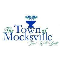 Christmas in Mocksville - Fun In The Park