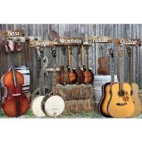 Friday Night Bluegrass Band @ Farmington Community Center