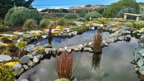 Double Koi ponds and waterfalls overlooking the Pacific.