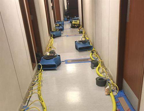 Water Damage Restoration Drying Equipment Set up at Commercial Facility