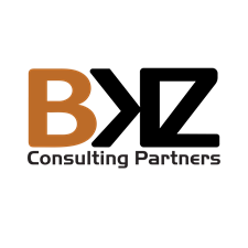 BKZ Consulting