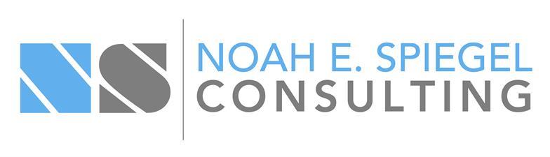 Noah E. Spiegel Consulting