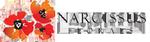 Narcissus Forals