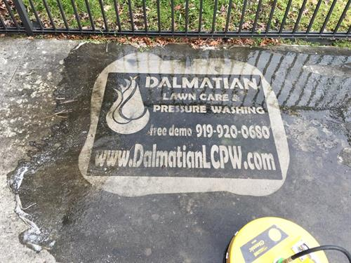 Dalmatian Lawn Care and Pressure Washing, LLC ...