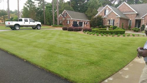Lawn Maintenance, Weekly and Bi-weekly service includes special attention to weeds in the landscape beds, vines and volunteers in shrubs. We provide custom lawn treatment programs that include seasonal pruning and tree and shrub pest and disease care.