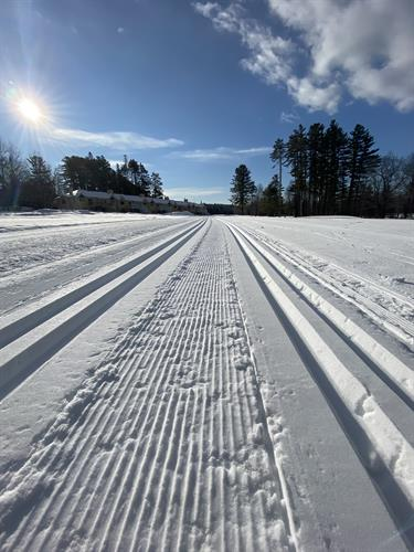 Nordic ski trails at Bethel Village Trails