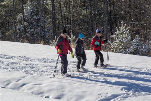 Snowshoeing at Pineland Farms in New Gloucester, ME.
