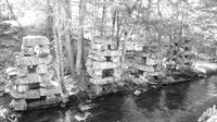 Gallery Image old_sawmill_pilings.jpg