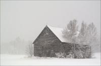 Gallery Image Maine_Std__019.jpg