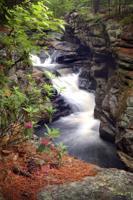Gallery Image Maine_Std__096.jpg