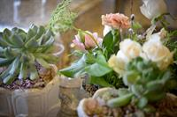 Succulents are perfect for winter weddings!