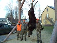 Bethel Maine's very first Moose Tagging Station