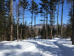 Carter's XC Ski Center & Shop
