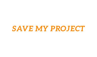 Save My Project LLC