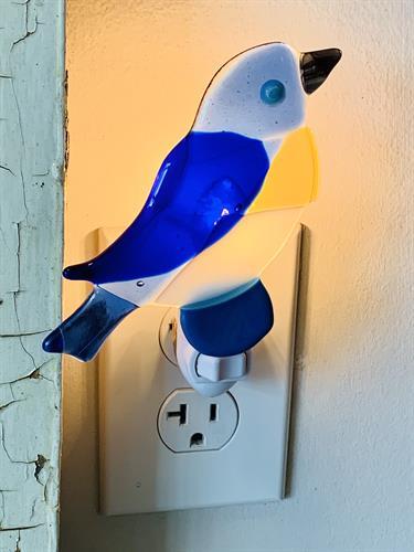 Gallery Image Evan_Pohlman._Night_Light._Bird.jpg