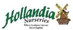 Hollandia Nurseries