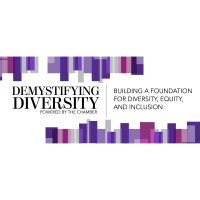 Demystifying Diversity Virtual Work Shop With Dr. Nika White