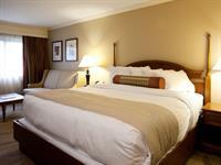 Gallery Image Hotel_Room_-_King_Bed07b251.jpg