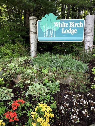 White Birch Lodge - Elk Rapids Michigan