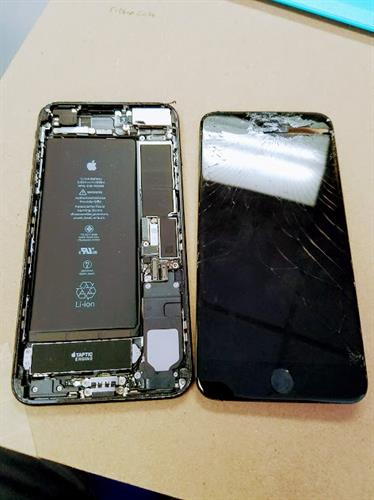 Insides of an iPhone...