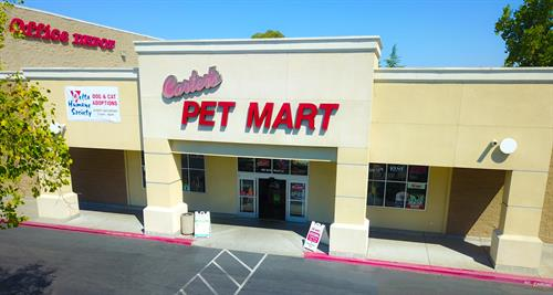 Carter's Pet Mart Stockton