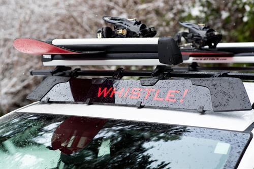 Gallery Image snowboardroof.jpg