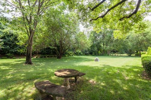 A tranquil setting for a picnic