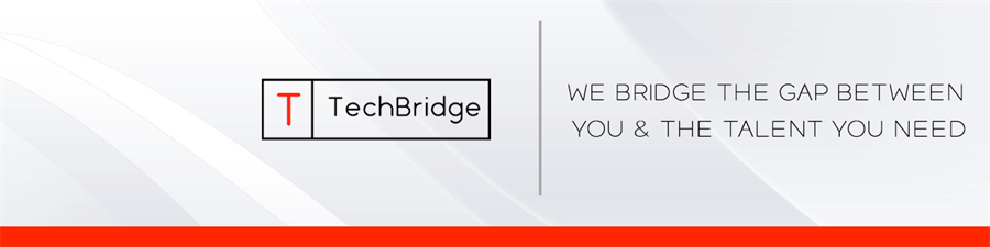 TechBridge Inc.