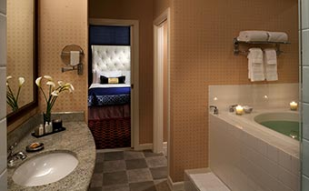 King Spa room, jetted tub and stand-up glass shower