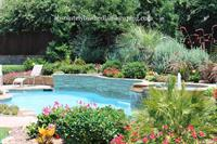 Swimming Pool Remodeling, Landscaping, New Pool Install