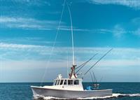 Fish Chatham Charters
