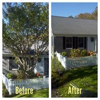 Gallery Image trre_before_and_after.jpg