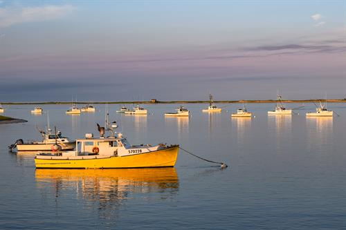 Chatham Fish Pier