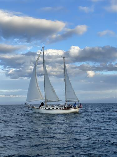 Cape Sailing Charters: Slowing Down the Speed of Life