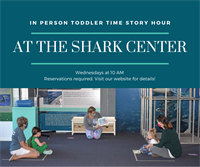 Toddler Story Hour at the Shark Center