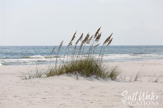 Gallery Image SWV_BeachMisc_1600-23.jpg