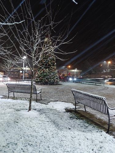 Winter in Jackson Square