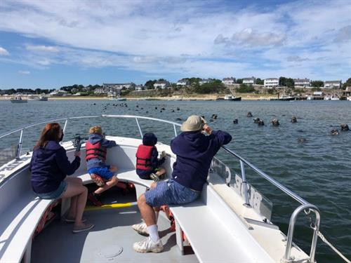 Private Family Seal Cruise
